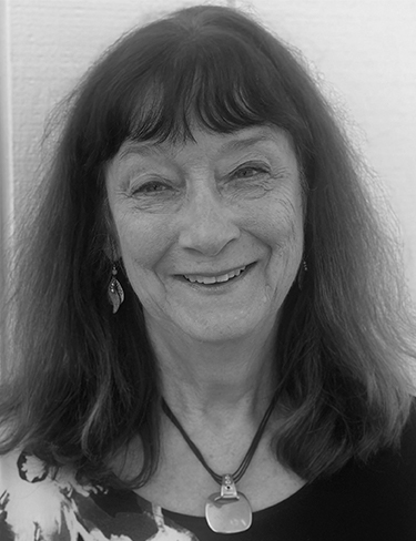 Carol L. Van Noy