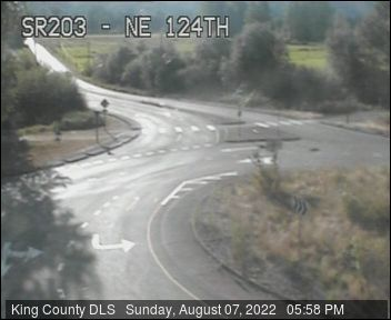 Traffic camera: Carnation-Duvall Road N.E. (SR-203) at N.E. 124th St.
